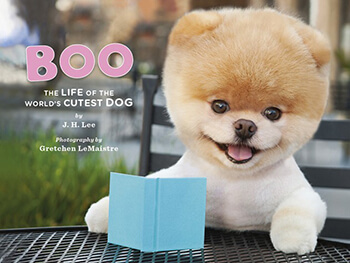 Boo: The dog book cover